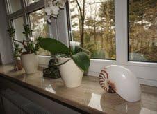 Prowadź dom w stylu eko